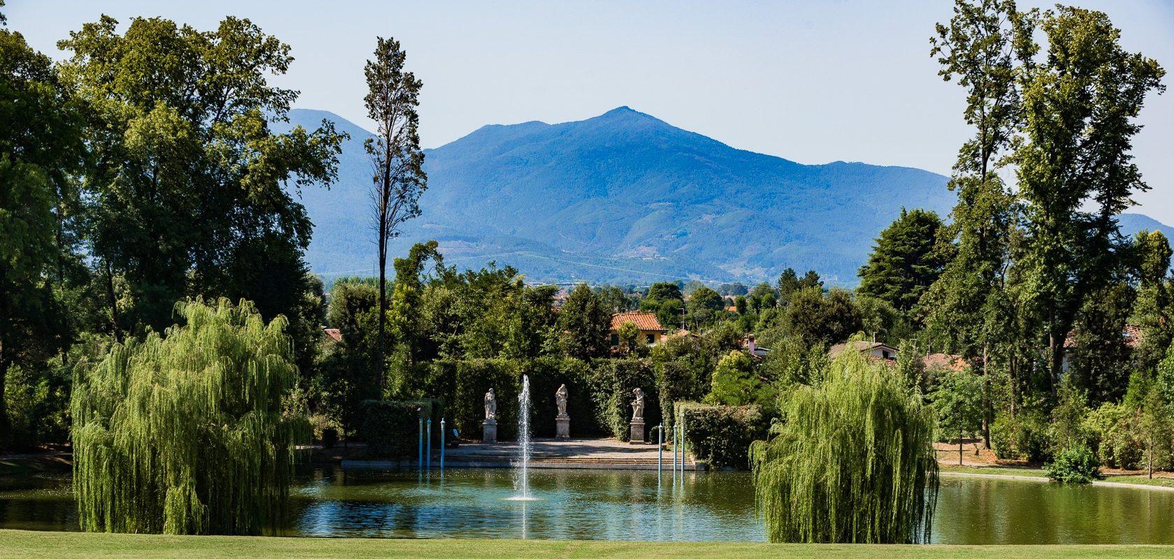 La Lucchesia & Borgo delle Camelie